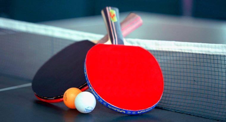 Table Tennis Ping Pong Set
